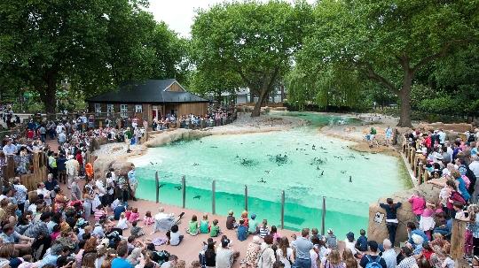 Lontoon eläintarha