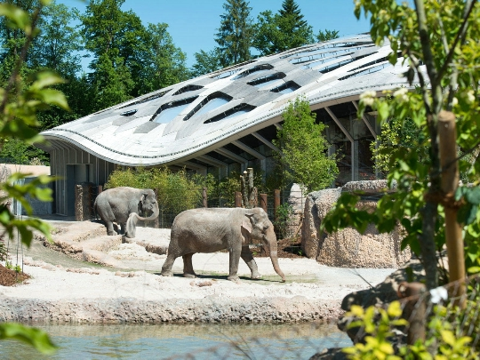 Zürichin eläintarha