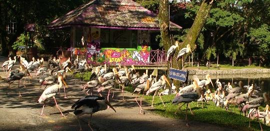 Kuala Lumpurin eläintarha