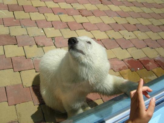 Dalian Zoo