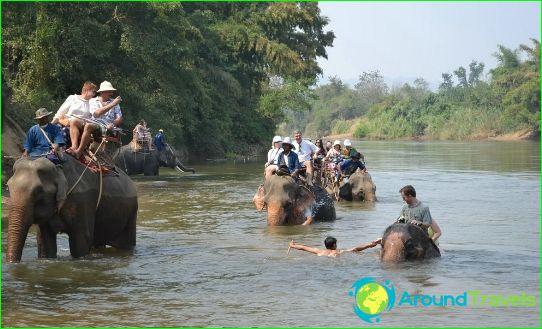 Excursies in Bangkok