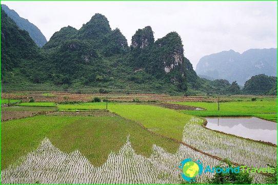 Vietnamin maakunnat