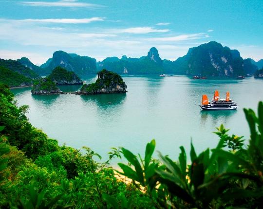 Vietnamin ominaisuudet