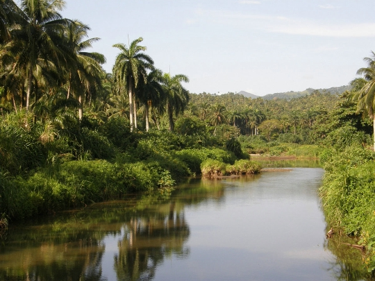 Kuuban kansallispuistot