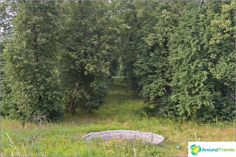 Липова алея, водеща към реката