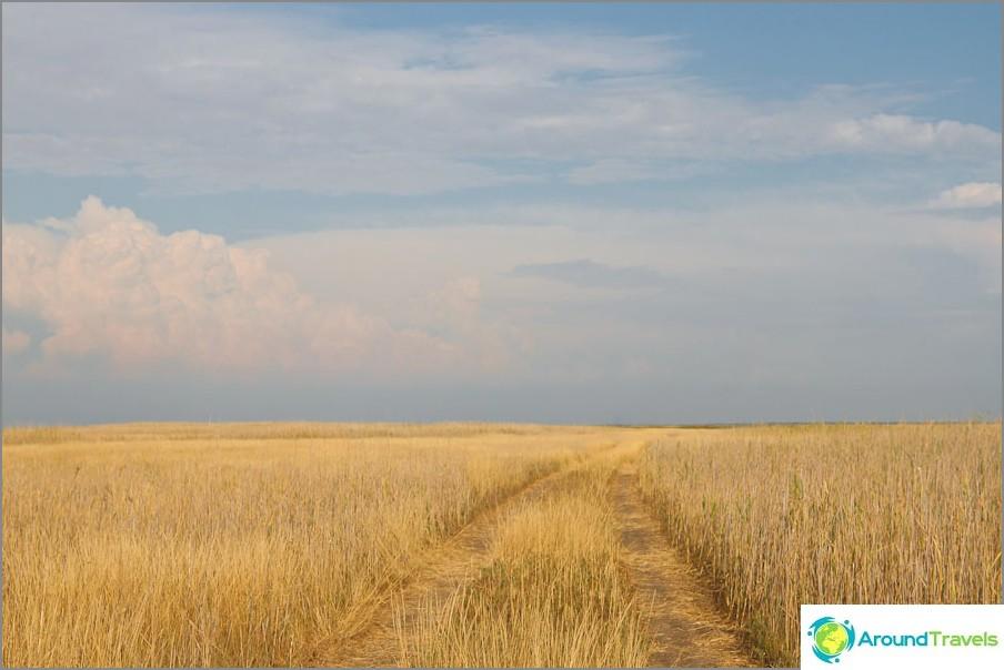Пътят водеше до някъде сред тревата и свършваше