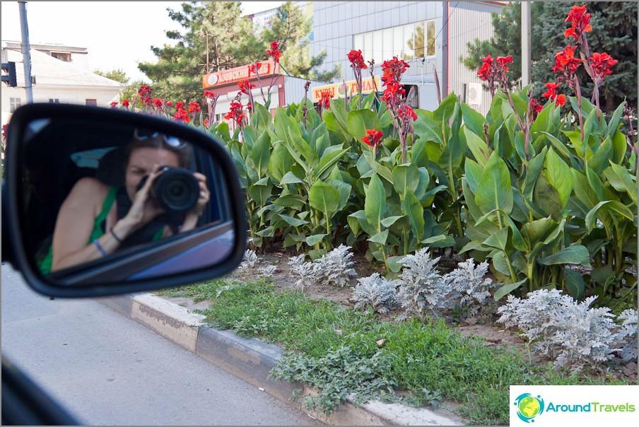 Kukkasängyt Azovin kaupungissa