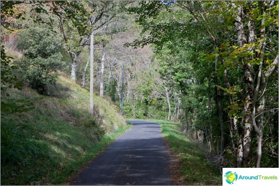 Тесен планински път - отличен асфалт