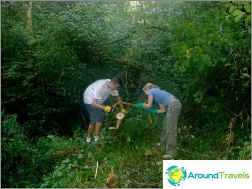 Доброволчество - възстановяване на пътеката в местната гора.