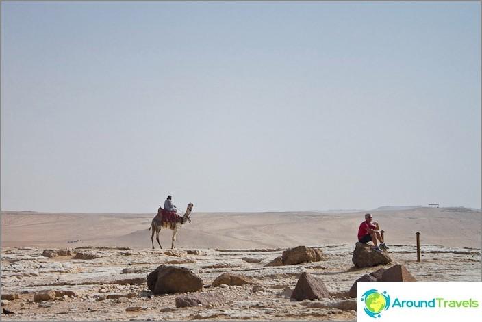 Gizan tasangon ja Saharan autiomaa.