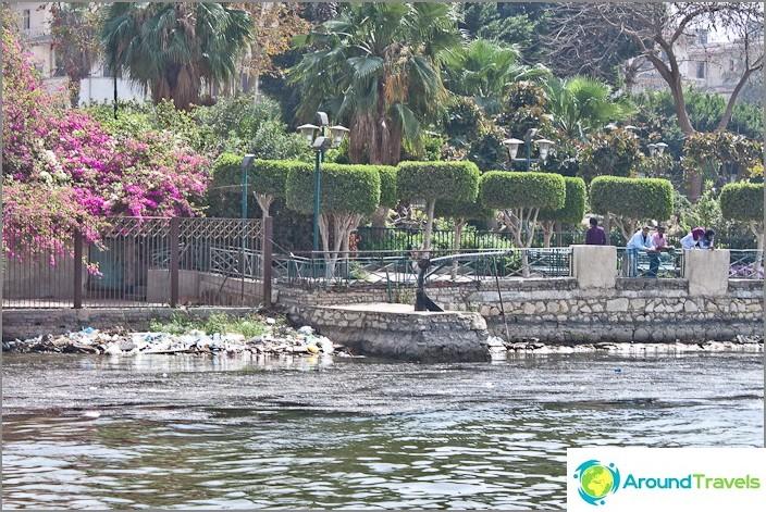 Egypti. Kairo. Puisto Niilin alueella.