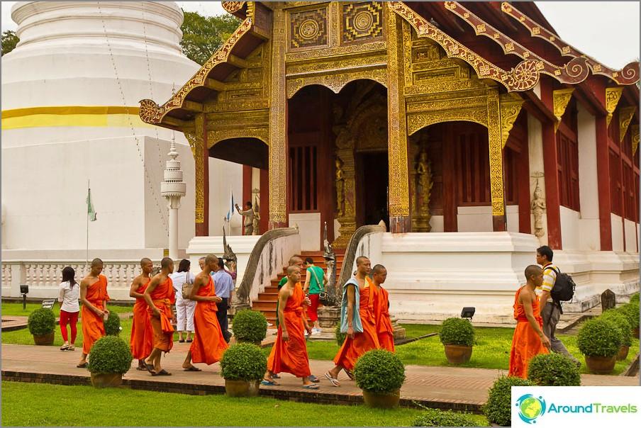 Nuori munkkien sukupolvi, ja kumpi heistä kasvaa?