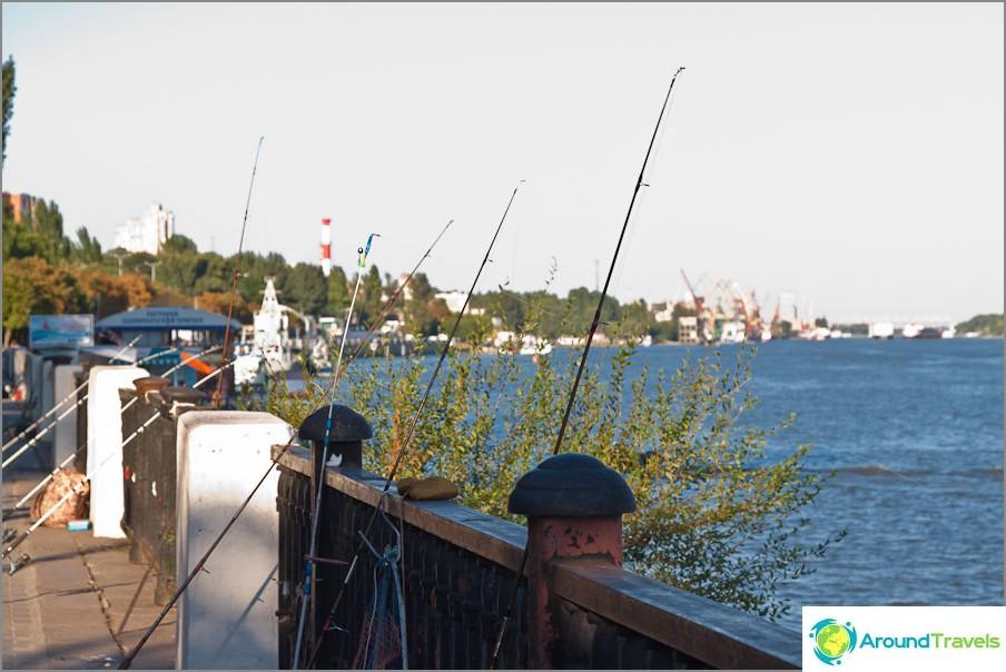 Jopa naiset kalastavat Rostovissa