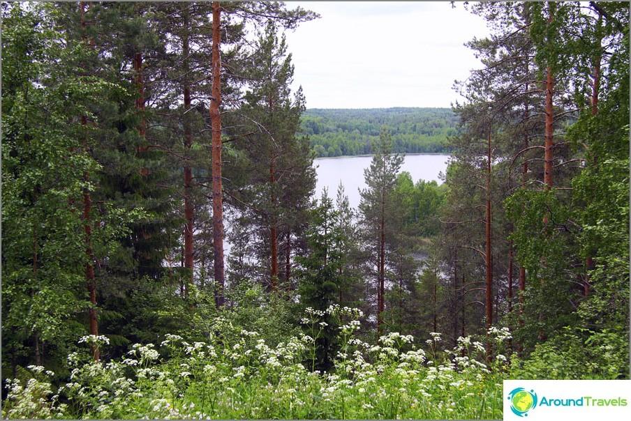 Skönhet Kenozerye, Arkhangelsk-regionen