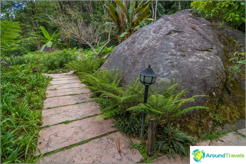 Национален парк Дой Итанон (19)