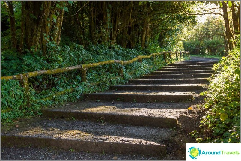 Национален парк Дой Итанон (39)