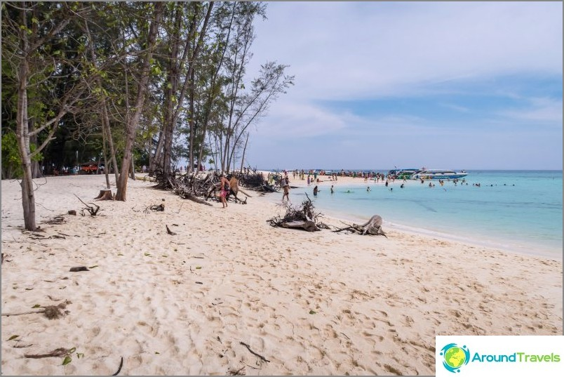 Bambu Beachin oikea puoli