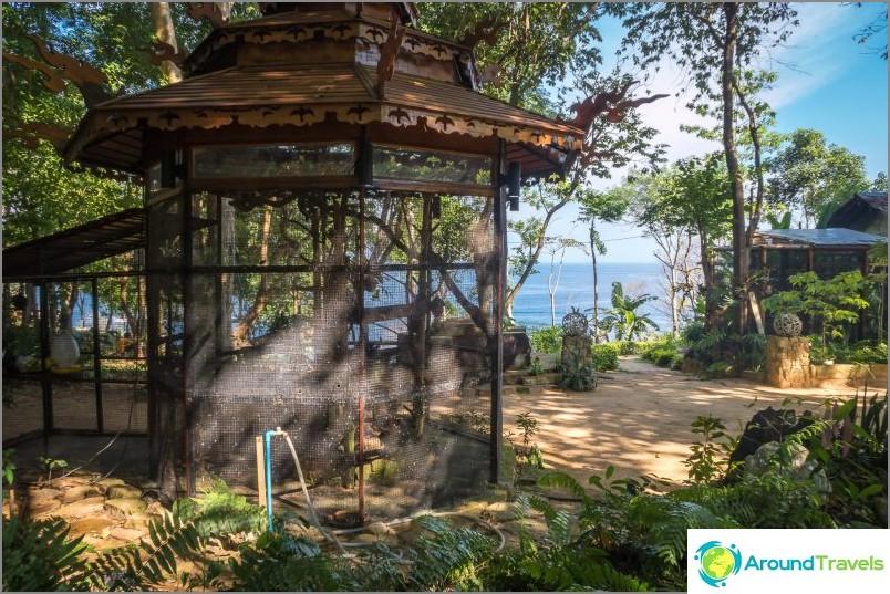 Apinabaarikahvila Phi Phissa - introvertteihin ja kynnyksen tapaamiseen