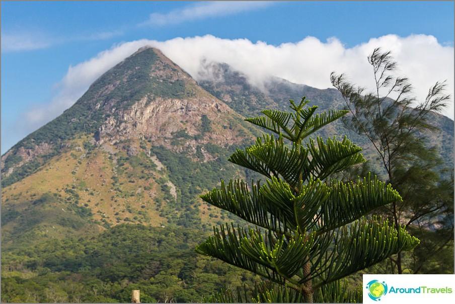 Ympärillä vuoria ja niin kauniita puita