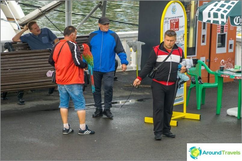Sea Station i Sochi - yachter, butiker och Semyon Semenych