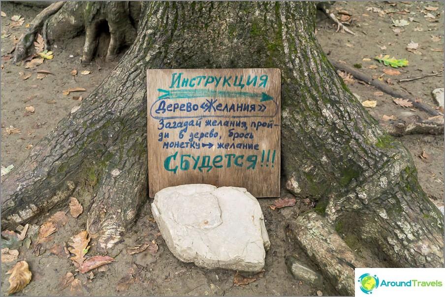 Laita merkki minkä tahansa puun lähellä ja selite on valmis!