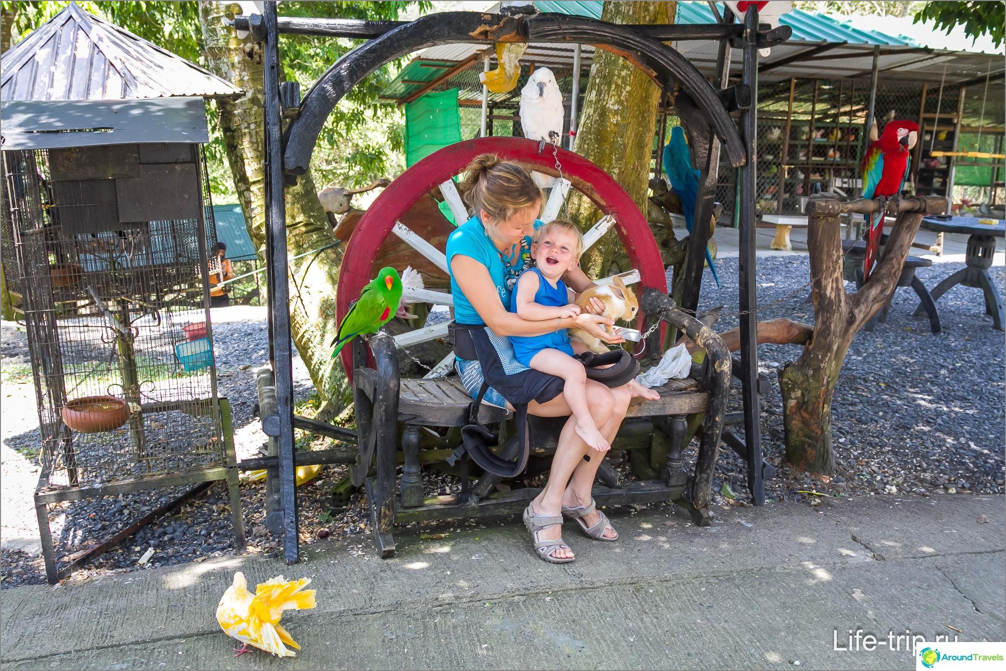 Ota yhteyttä Zoo Paradise Park -puistoon