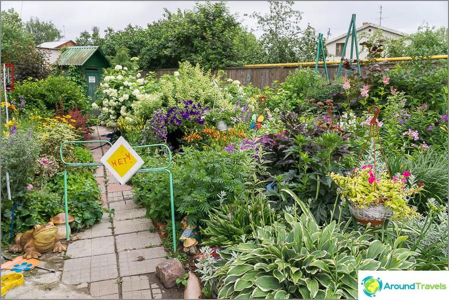 Sisäänkäynnin lähellä on kaunis puutarha