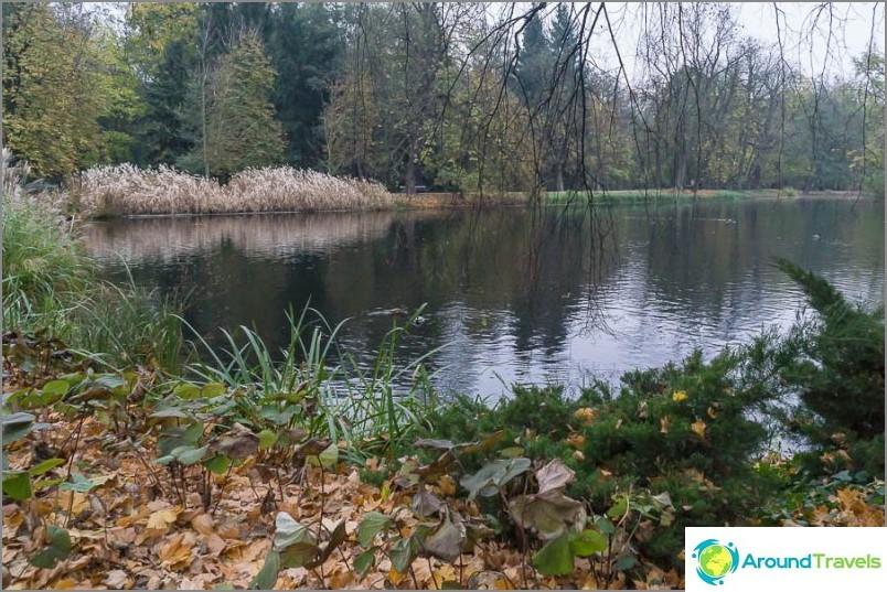 Едно от езерцата в парка