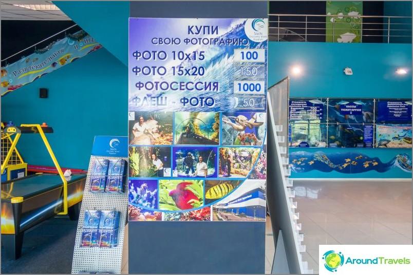 Oceanarium Adlerissa - yllättävän ilahduttavaa ja järkyttävää