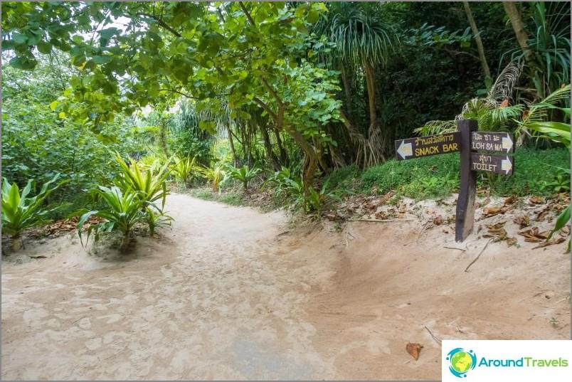 Maya Bay Phi Phi: llä - koko totuus rannasta, elokuvasta DiCaprion kanssa
