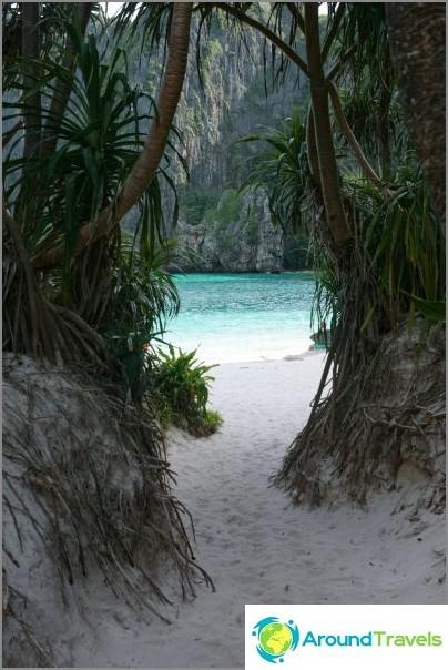 Maya Bay rintakehästä
