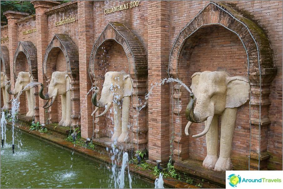 Heti tultuaan Chiang Maiin eläintarhaan