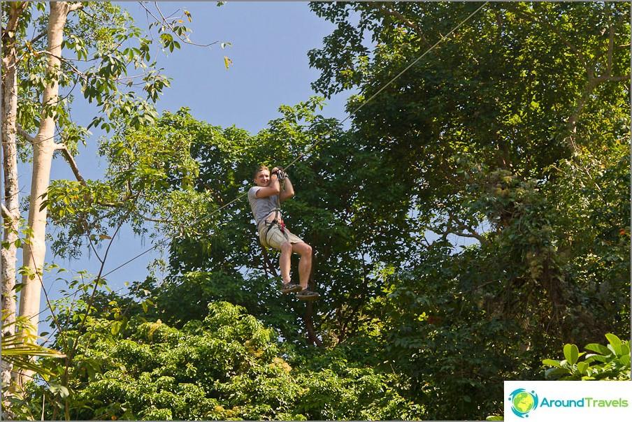 Lentää vetoketjuilla puiden yläosien välillä