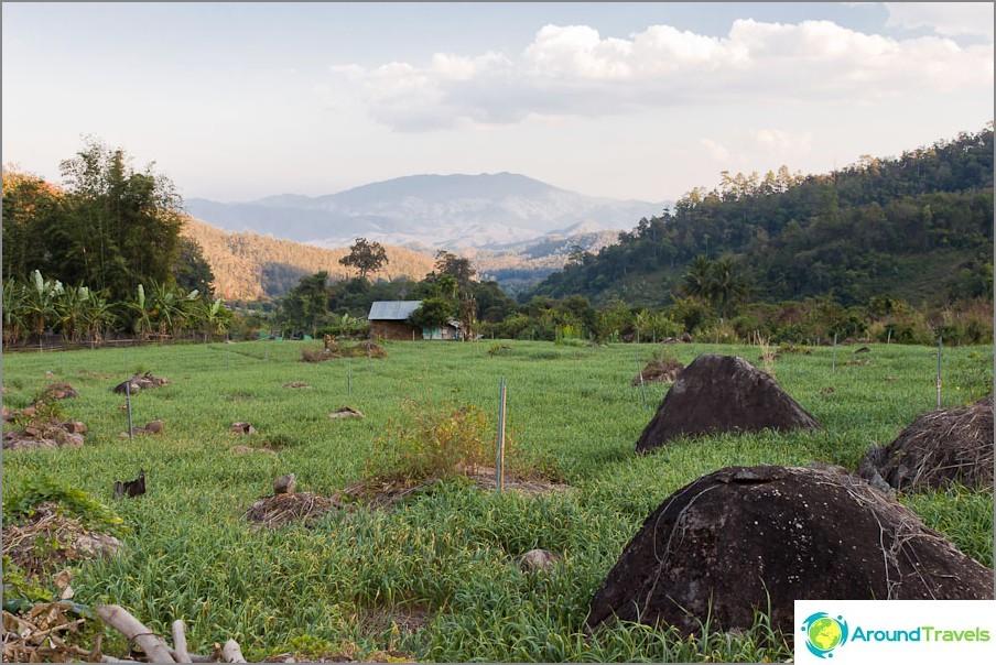 Thaimaan maaseutumaisemat