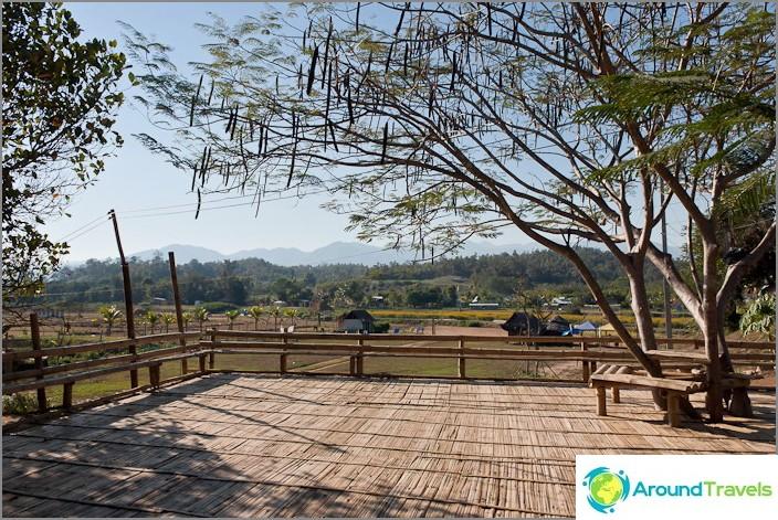 Бамбукова платформа