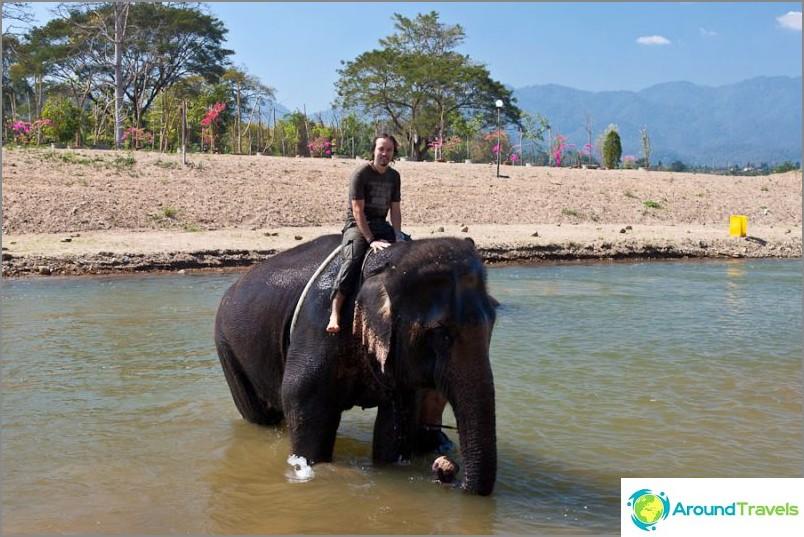 Norsu ratsastus thaimaassa