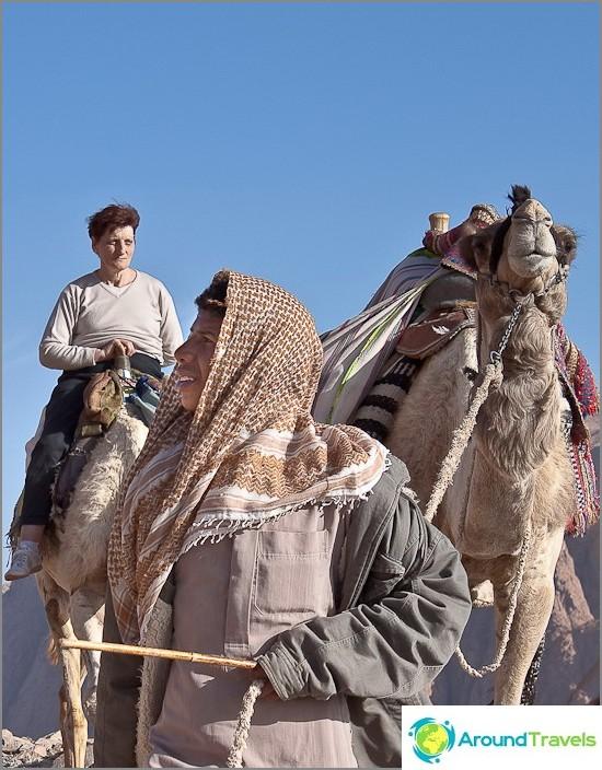 Mooseksen vuori. Nuori beduiini ja hänen dromedari.