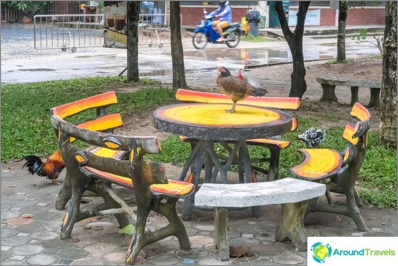 Voit istua alas ja syödä varjossa - tämä on normaalia Thaimaassa