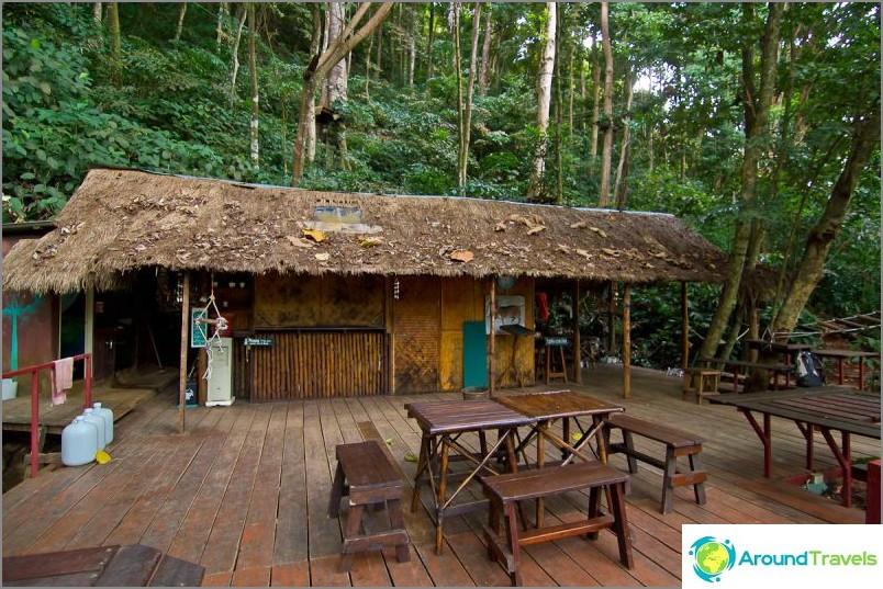 Tree Top -seikkailupuisto, josta kaikki alkaa
