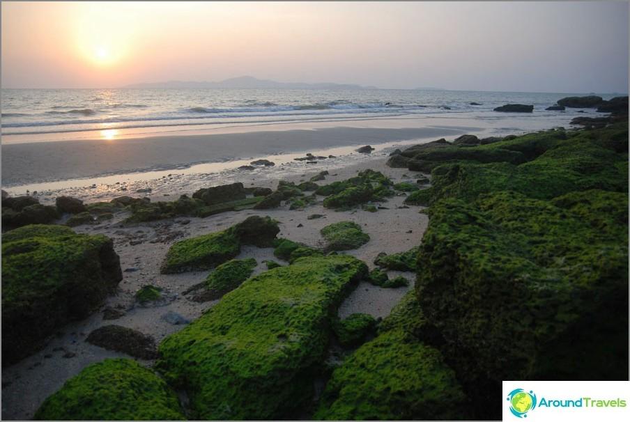 Kivet rannan reunalla