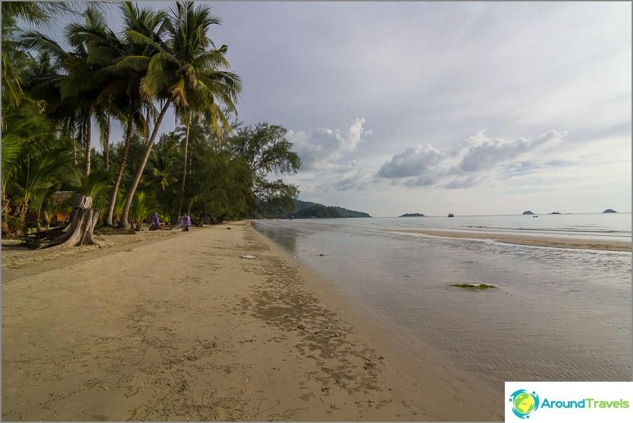 Klong Prao palmumetsän alueella