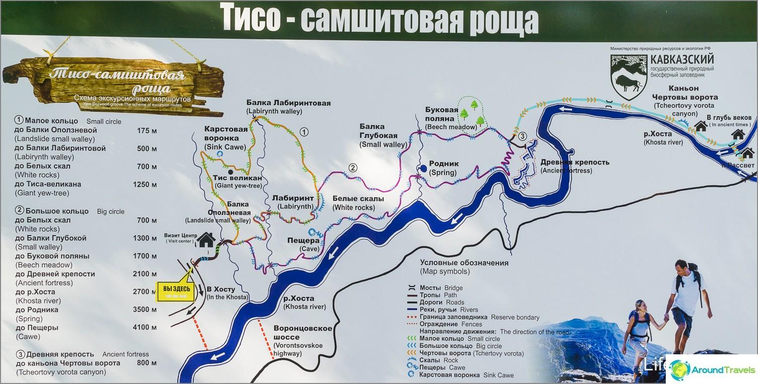 Kartta juutto-puksipuulehdosta