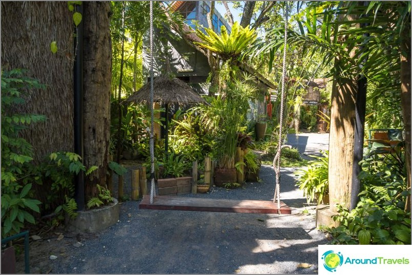 Phuketin kasvitieteellinen puutarha - kasvi- ja selfie-ystäville