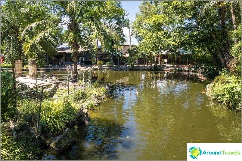 Phuketin eläintarha - arvostelut, hinnat, valokuvat ja näyttelyaikataulu
