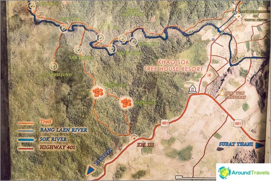 Kartta Khao Sokin kansallispuistosta - saat käsityksen rafflesian sijainnista
