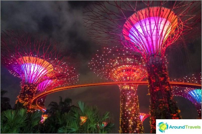 Valonäkymä Avatarin puiden kanssa Singaporesta - välttämätön!