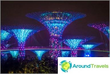 Singaporen Avatar-puunäyttö