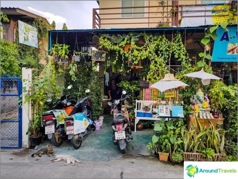 Гара Кото Котки Кафе в Чианг Май