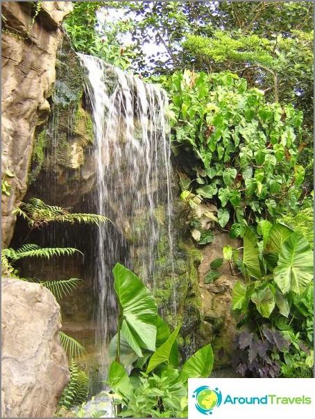 Водопад в Джинджифиловата градина. commons.wikimedia / Calvin teo