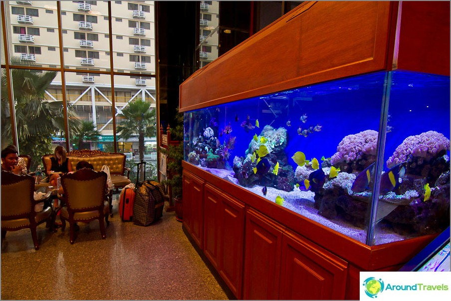 Akvaariot kaloilla aulassa